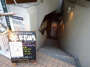 Kiwa_Live2