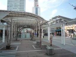 Shintoshin2